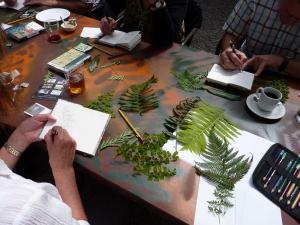 Cursus Botanisch tekenen voor beginners