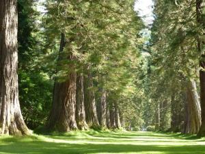 Zaterdag 20 en zondag 21 mei: Fête de la Nature