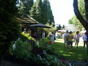 zaterdag 26 mei plantenmarkt