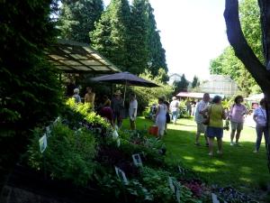 Zaterdag 26 mei Plantenmarkt 'Stoer in de Schaduw'