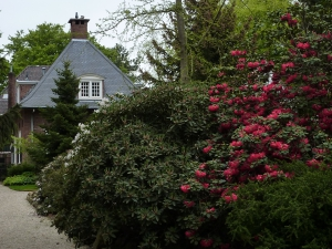 Mooiste plekje van Hilversum!