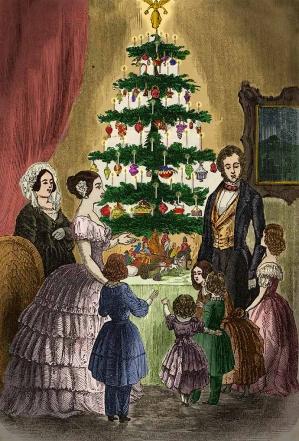 Kerstboomrondwandeling